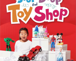 Big Lots Toy Book 2016