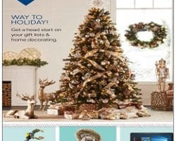 Sam's Club Holiday Book Preview 2017