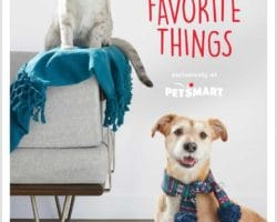 Petsmart Holiday Book