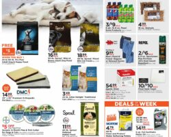 Fleet Farm Weekly Ad July 10 - July 18, 2020