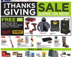 Fleet Farm Weekly Ad November 13 - November 21, 2020