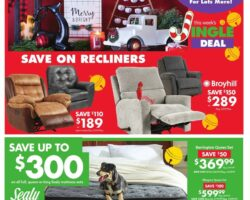 Big Lots Black Friday Sale 2020 - Week of 11/21